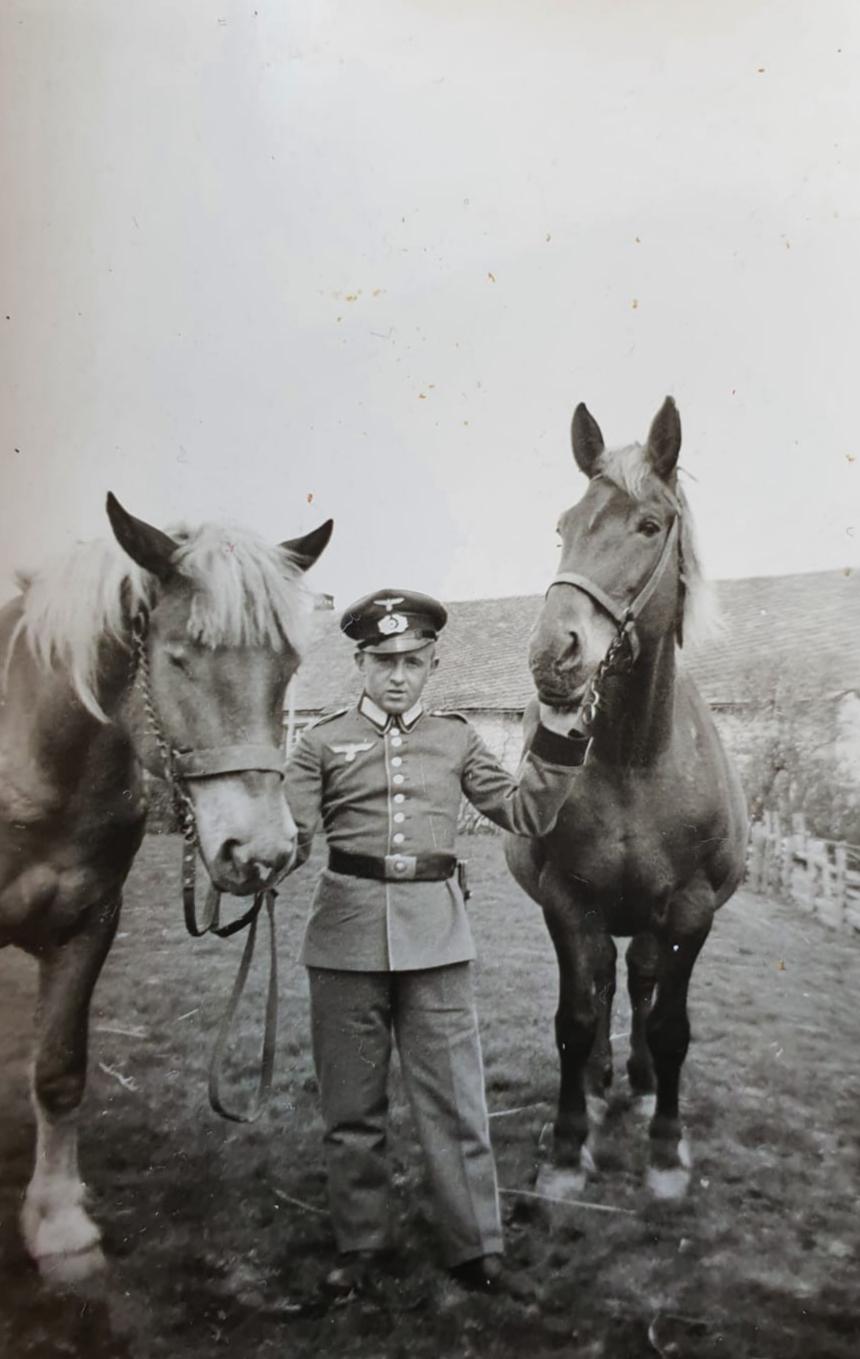 Paul und seine geliebten Pferde